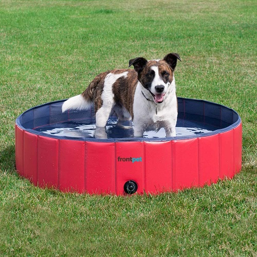 FrontPet Foldable Dog Swimming Pool Review