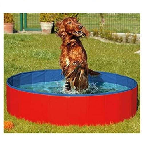 N&M Products Foldable Dog Pool Review