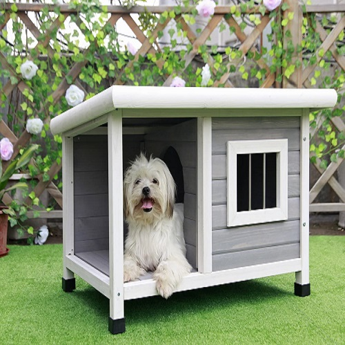 Petsfit Outdoor Dog House Review