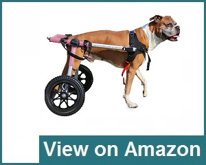 Walkin' Wheels Dog Wheelchair Review