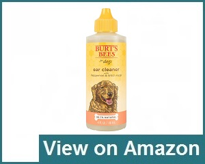 Burt's Bees Cleaner Review