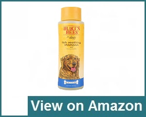Burt's Bees Dog Shampoo Review