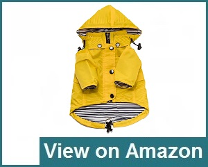 Ellie Dog Wear Yellow Review