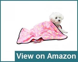 Expawlorer Pet Blanket Review