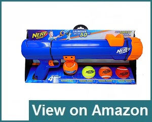 Nerf Dog Ball Review
