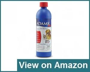 Adams Review
