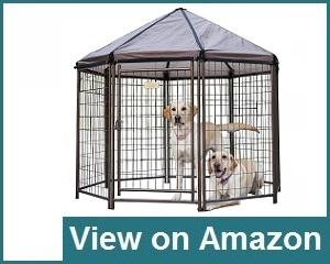 Advantek Kennel Review
