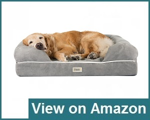 Friends Forever Tempurpedic Bed Review