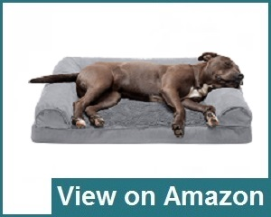 Furhaven Pet Dog Bed Review