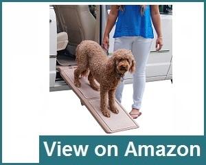 Pet Gear Travel Ramp Review