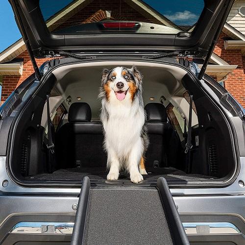 Pet Safe Folding Dog Ramp Review