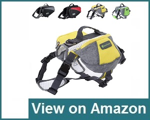 Wellver Dog Backpack Review