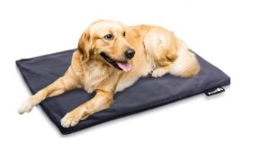 Best Dog Heating Pads