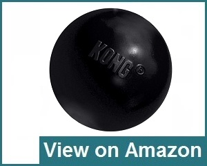 Kong Extreme Ball Toy Review
