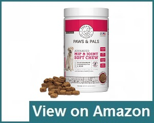 Paws & Pals Review