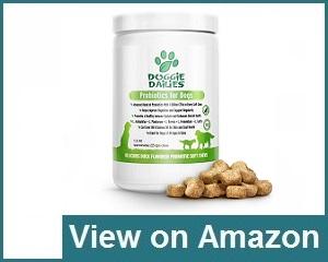 Doggie Dailies Probiotic Review