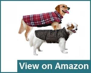 MIGOHI Dog Jacket Review