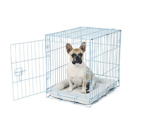 Why Do Dogs Cry In The Crate