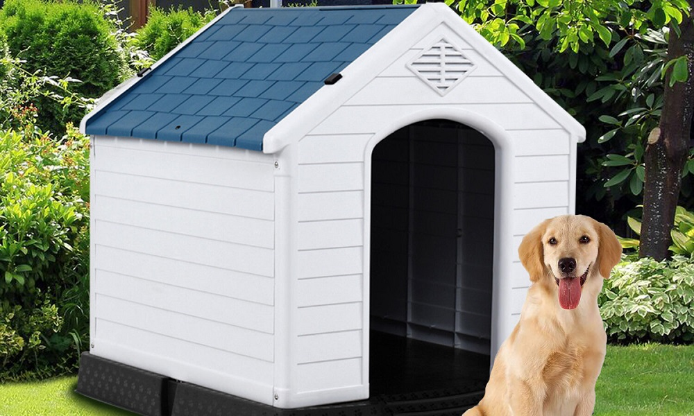 Different Ways to Insulate a Plastic Dog House