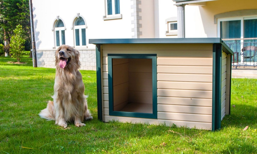 How to Insulate a Plastic Dog House