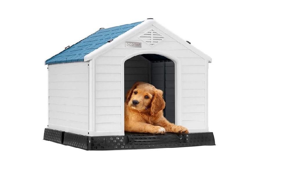 How to Insulate the Floor, Ceiling, and Wall of a Plastic Dog House