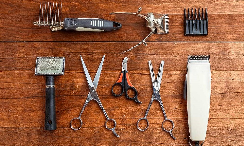 Right Tools to Cut Dog's Hair