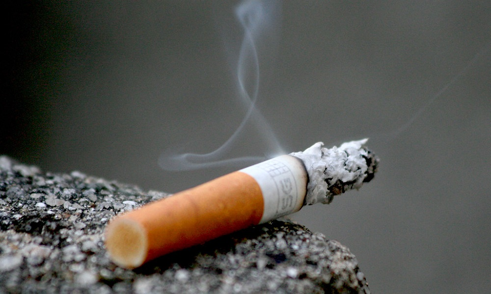 Risks of Nicotine Poisoning in Dogs
