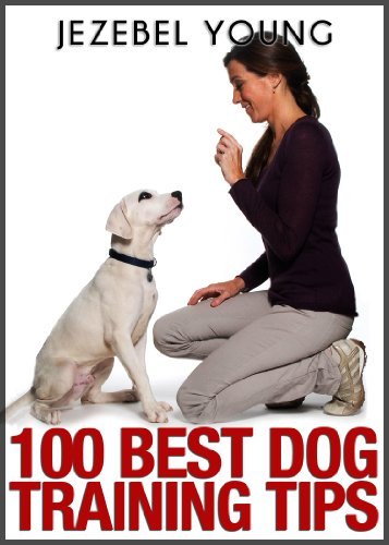 How to Build Your Dog's Listening Capability